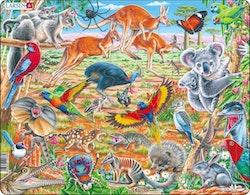 Australiens djur 60 bitar