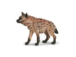 Hyena Papo)