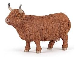 Highland cattle ko (Papo)