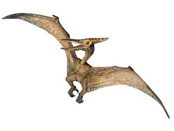 Pteranodon 23 cm (Papo)