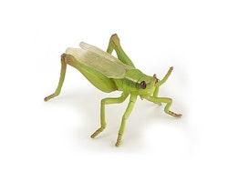 Gräshoppa 6 cm (Papo)