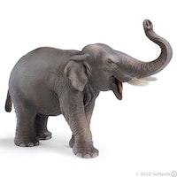 Asiatisk elefant hane (Schleich)
