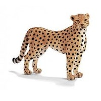 Gepardhona (Schleich)