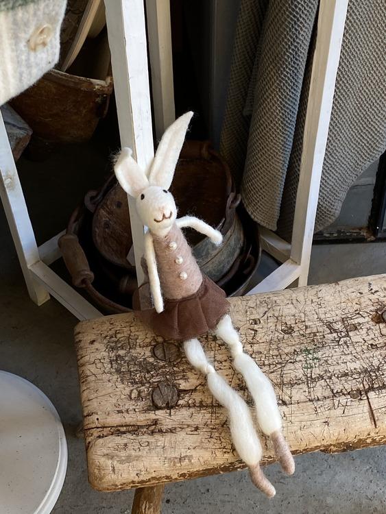 Sittande kanin