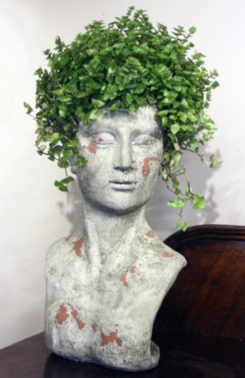 Planteringsbyst / huvud