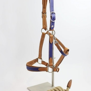 Atelier Pravins High quality halter and lead rope (blue)