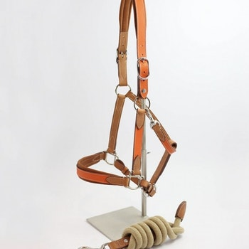 Atelier Pravins High quality halter and lead rope (orange)