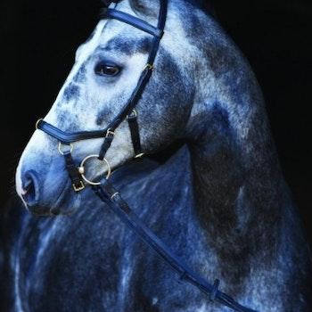 Horseware Rambo Micklem multihodelag svart