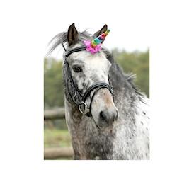 Unicorn horn til hest