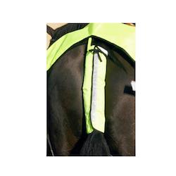 Hale refleks til hest