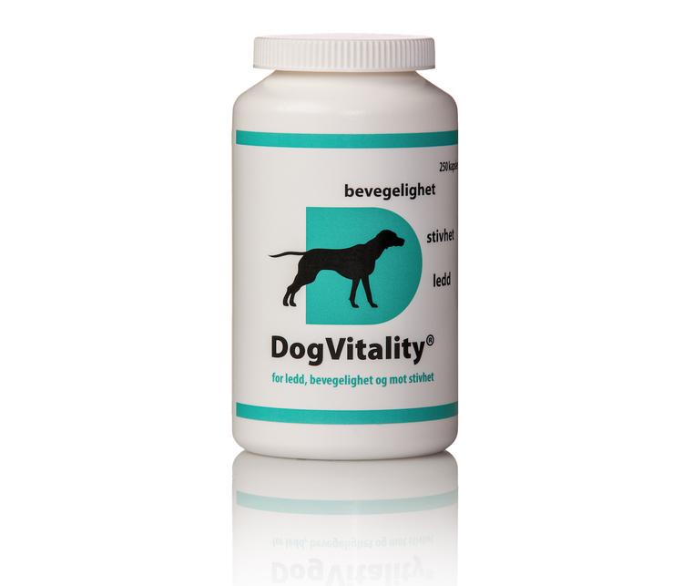 DogVitality® For Ledd, Bevegelighet Og Stivhet. 250 Kapsler