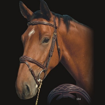 Dyon Fancy Anatomic Flash Noseband Bridle