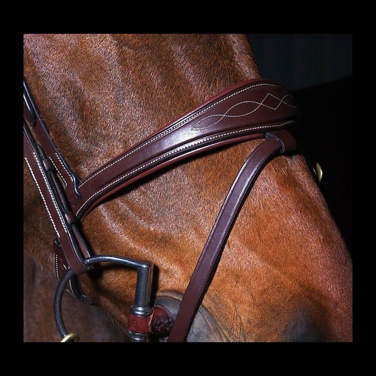 Dyon Fancy Anatomic Flash Noseband Bridle