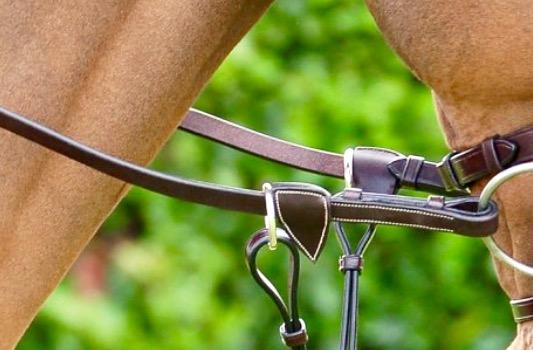 Dyón Hunter Reins 7 Leather Loops Brown