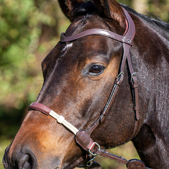 Dyon La Cense Bitless Bridle