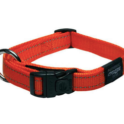 Classic Collar – Reflective Stitching 34-56cm