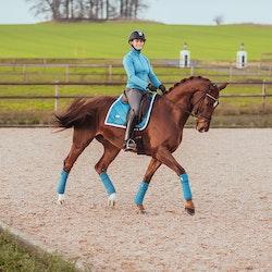 Fleece bandasjer Parisian Blue - Equestrian Stockholm