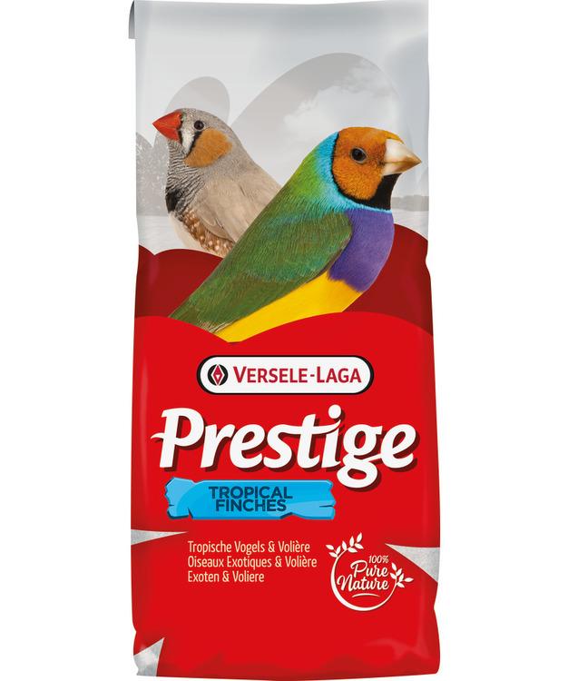 Prestige - Tropiska Finkar