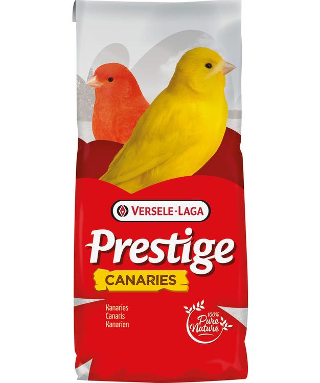 Prestige - Germination Seeds Canaries
