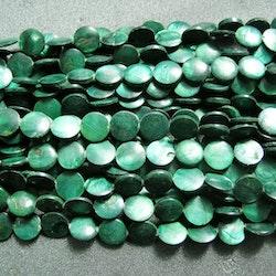 Snäckskalspärlor - coin - button - Grön - 11,5mm - 4st