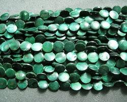 Snäckskalspärlor - coin - button - Mörkgrön - 11,5mm - 1sträng