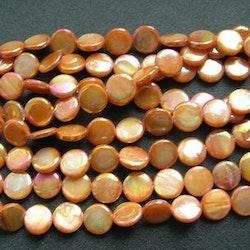 Snäckskalspärlor - Coin - Button - Orange - 10mm - 1sträng