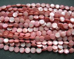 Snäckskalspärlor - Coin - Button - Rosa - 11,5mm - 1sträng