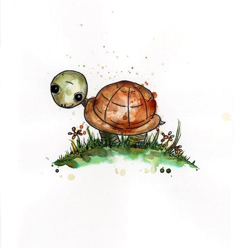 Print - Sköldpaddan Morgan