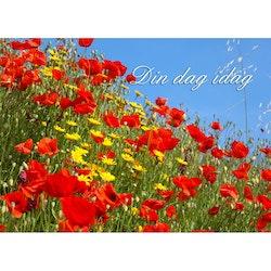 Din dag idag