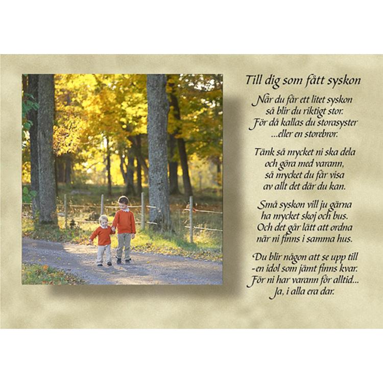 Diktkort med text av Siv Andersson - Till dig som fått ett syskon. Foto: Per Johansson. Kortbutiken säljer detta vykort.