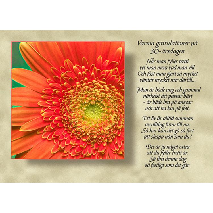 Diktkort med text av Siv Andersson - Varma gratulationer på 30 årsdagen. Foto: Per Johansson. Kortbutiken säljer detta vykort.