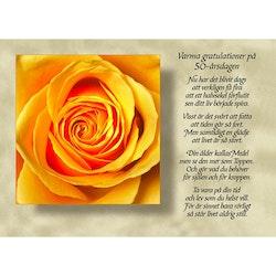 8037 – Varma gratulationer på 50-årsdagen