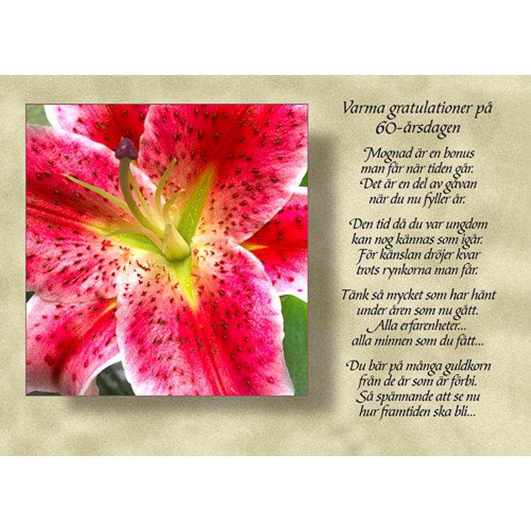 8038 – Varma gratulationer på 60-årsdagen