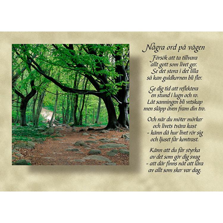 Diktkort med text av Siv Andersson - Några ord på vägen. Foto: Per Johansson. Kortbutiken säljer detta vykort.