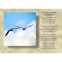 En hälsning från flyttfåglarna
