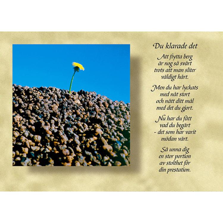 Diktkort med text av Siv Andersson - Du klarade det. Foto: Per Johansson. Kortbutiken säljer detta vykort.