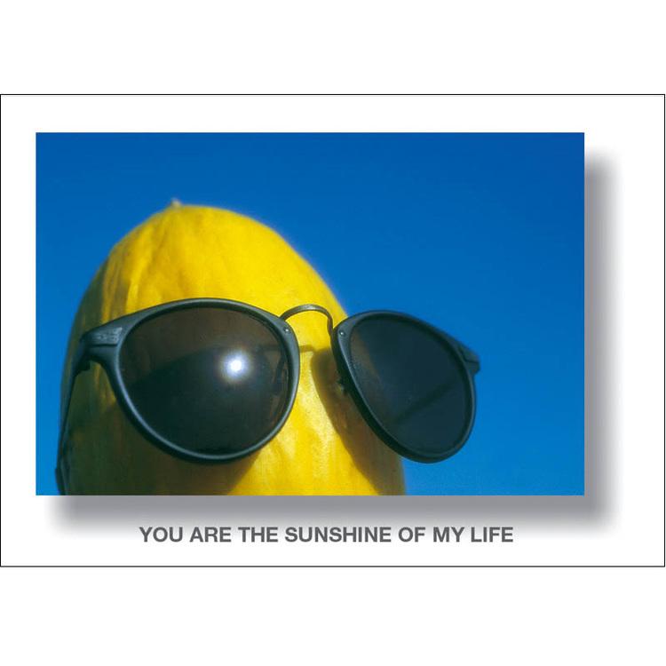 Vykort. melon med glasögon. Foto: Per Johansson - Joanzon. Kortbutiken säljer detta vykort.