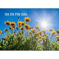 4041 – Ha en fin dag