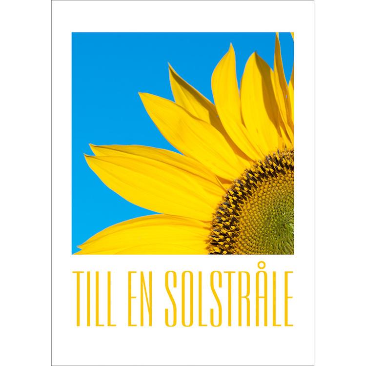 Vykort. Till en solstråle solros. Foto: Per Johansson - Joanzon. Kortbutiken säljer detta vykort.