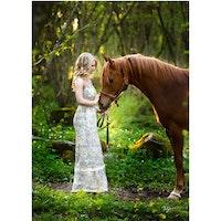 4352 – Hästromantik