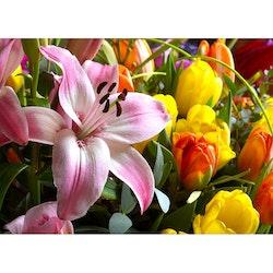 5058 – Blommor