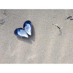 5064 – Hjärta på sand