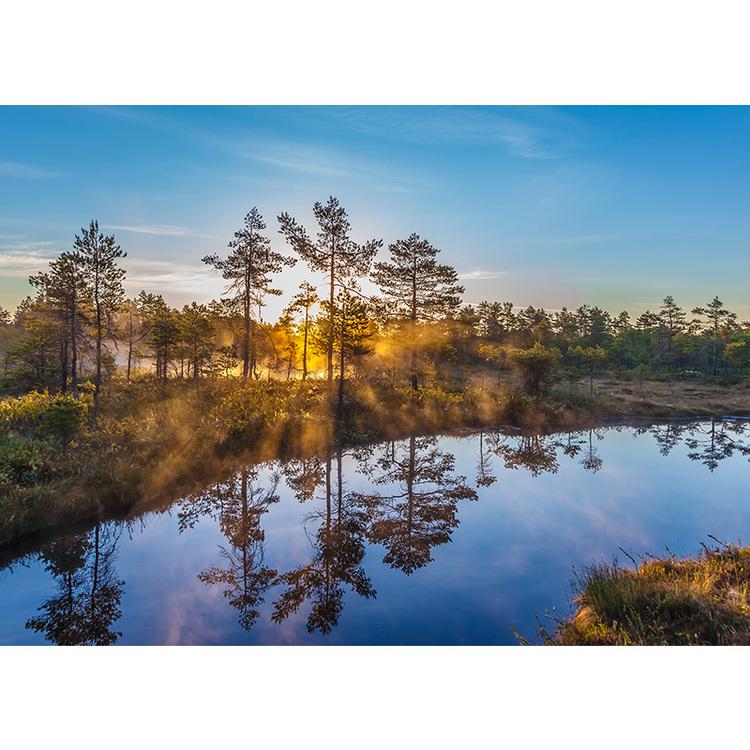 5080 – Tidig sommarmorgon