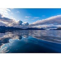 Speglande hav
