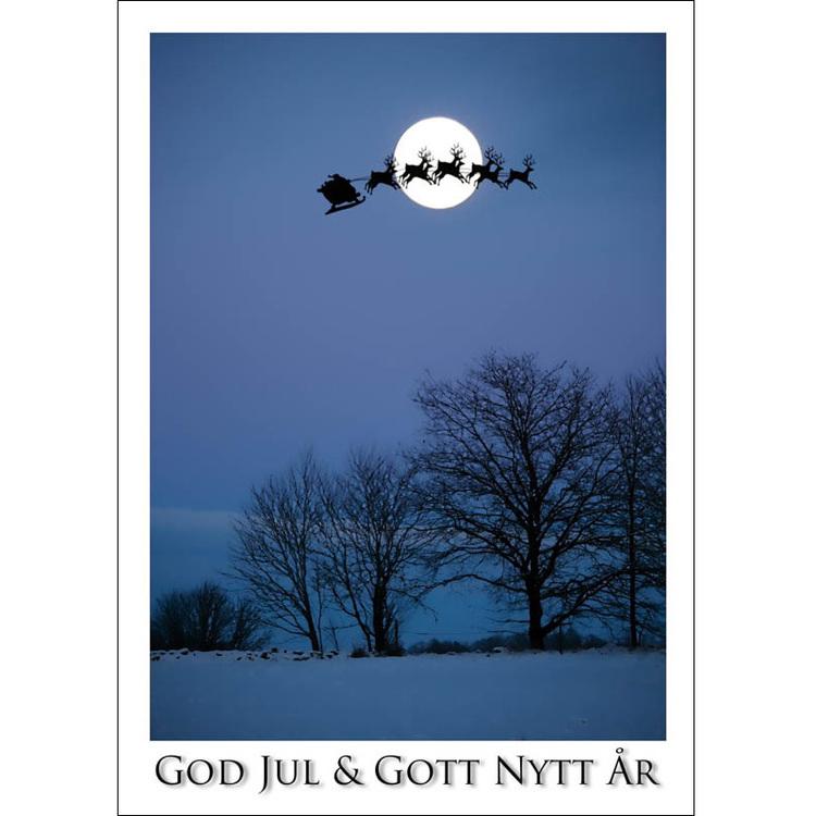 Julkort – Tomtesläde mot vintermåne