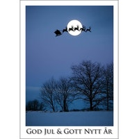 J-1213 Julkort – Tomtesläde mot vintermåne