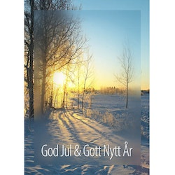 J-1210 Julkort – God Jul Morgonsol