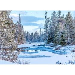 Julkort – Vinterälv