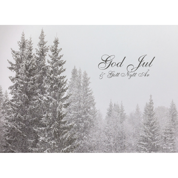 Julkort – Snöfall i skog