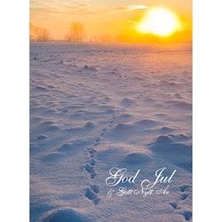 Julkort - Spår i snön